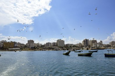 Gaza seaport with birds 2