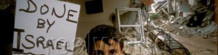 cropped-1102_boy_sign_palestine_israel_war_.jpg