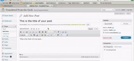 Tutorial WordPress 3 (Partea 2)
