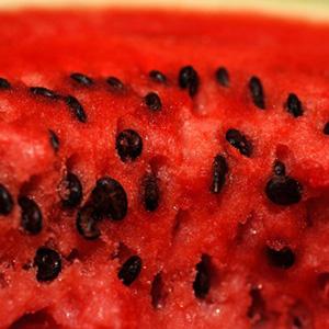 Watermelon Honey Balsamic Summer Salad