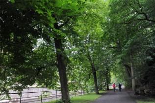 Karlovy Vary'nin yeşil dokusu yürüyüş için harika olanaklar sunuyor.