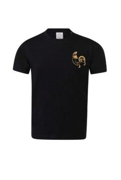 t-shirt le COP français