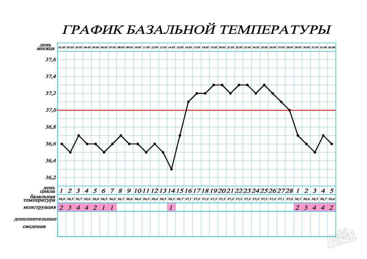 3c037706409 Ovulatsioon on kuu keskel. Mis on ovulatsioon? Me selgitame lihtsate ...
