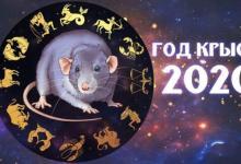 Интересный гороскоп по знакам Зодиака на 2020 год