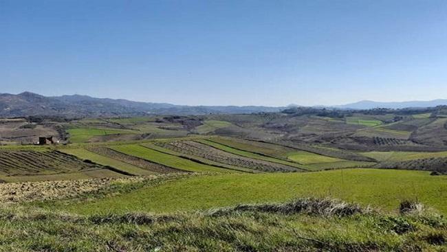 Nisma e OKB në mbështetje të fermerëve shqiptarë që investojnë në prodhimet bujqësore vendase