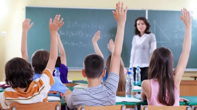 redeschiderea-scolilor,-ceruta-in-instanta.-motivul-invocat