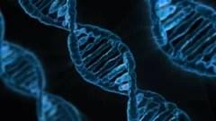 cat-de-rezistenta-este-noua-tulpina-de-coronavirus-care-provine-din-africa-de-sud