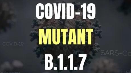 zece-noi-cazuri-de-infectare-cu-noua-tulpina-de-coronavirus,-la-persoane-din-diferite-regiuni-ale-tari