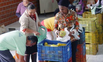 Boa ação da Ceasa Paraná atende 88 mil pessoas