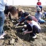 1.000 de copii plantează 10.000 de puieţi în zona Ploieşti Shopping City