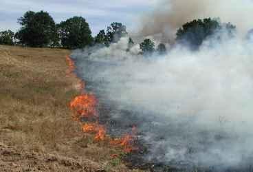 Incendii în şapte localităţi din Prahova. Au ars 5,5 hectare de vegetaţie