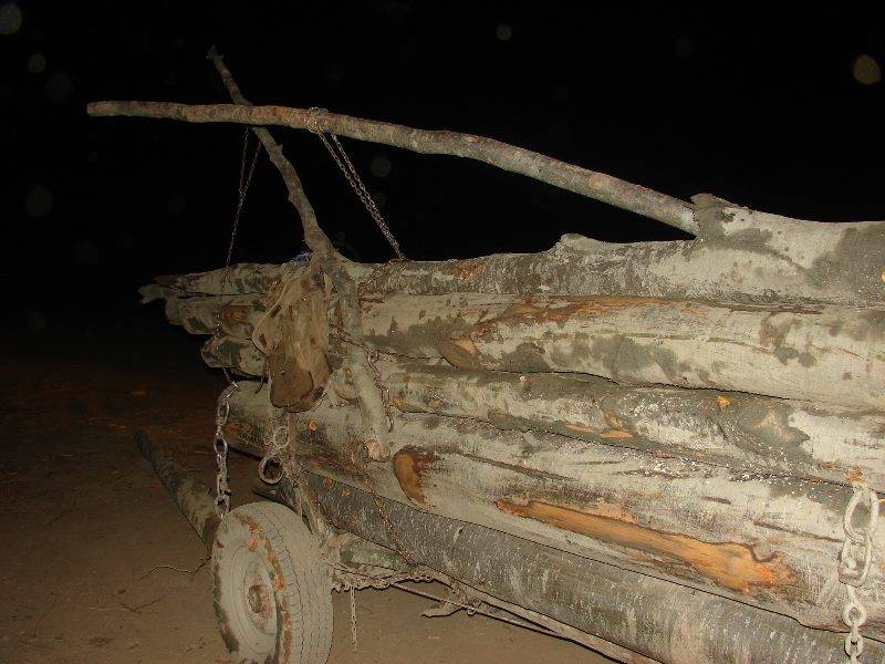 Transport ilegal de lemn sesizat prin 112 în zona Apostolache