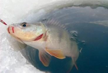 Avertismentul ISU pentru amatorii de pescuit la copcă