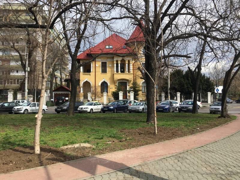 Acţiune a SGU Ploieşti pentru regenerarea Bulevardului Castanilor
