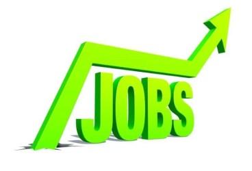 Peste 400 locuri de muncă vacante în Ploieşti