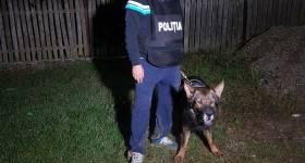 Distincții pentru polițistul Valentin Arsene și câinele Ref, eroii salvatori de la Dumbrava