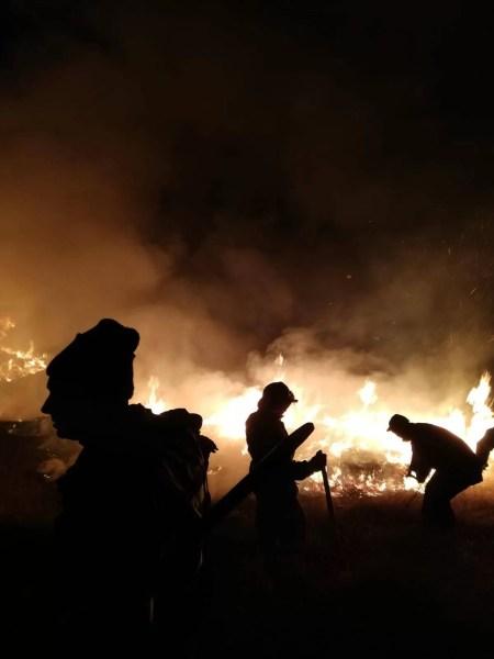 Bărbaţi arşi grav în incendii de vegetaţie uscată