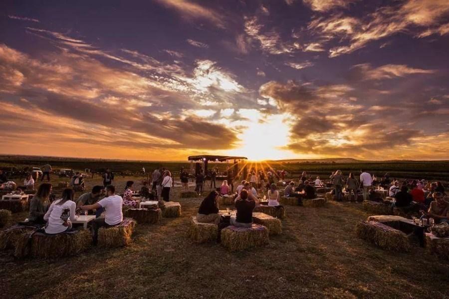 MAUVE Wine Experience III – Festival de muzică și film în via Tohani România