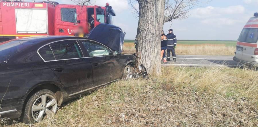 Imagini de la accidentul cu maşina intrată într-un pom, la Albeşti-Paleologu (DN1D)