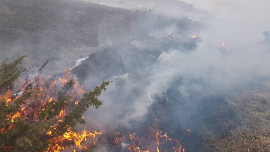 Imagini de la incendiul extins de pe muntele Steiasa