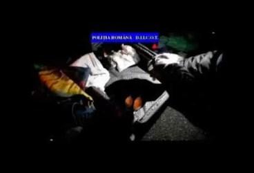 Kilograme de droguri găsite de poliție în locuințele a doi ploieșteni