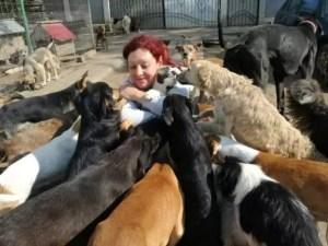 Iubitorii de animale, în greva foamei, la Slatina