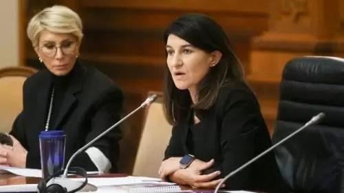 ministrul respins al muncii violeta alexandru in guvernul ciolo cu tot cu partenerul ei de afaceri 18684007