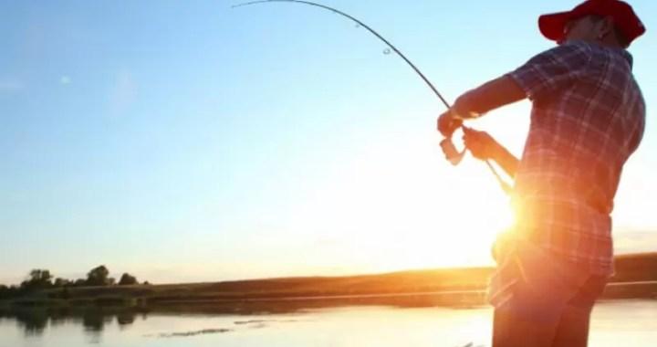 pescari Acasa