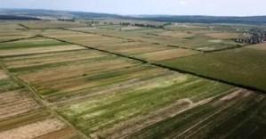 Terenurile agricole se vor vinde după legea unui oltean