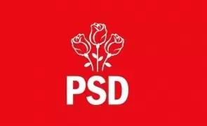 Demnitar PSD :''Mai bine demisionez din PSD decât să mai votez un guvern liberal''