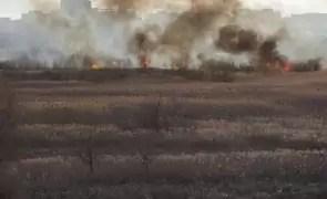 Incendiu devastator: o sută de hectare de miriște au ars; pompierii au intervenit în forță