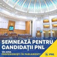 Voiculescu vrea în Senat. Cine sunt  candidații PNL Olt?