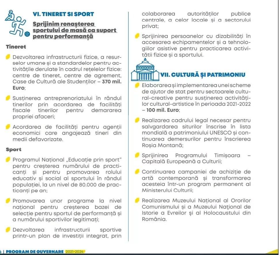 PNL program de guvernare site