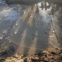 Oi moarte într-un pârâu înghețat din Bobicești. Ciobanul dispărut, încă, căutat de polițiști