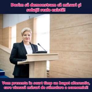 Siminica Mirea: PSD va prezenta un buget alternativ
