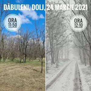 Schimbări climatice vizibile la Dăbuleni: vremea de primăvară s-a transformat în una de iarnă în doar câteva minute