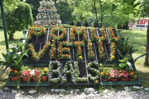 Festivalul ''Pomul Vieții''-Balș, ediția a XXVII a