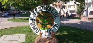 Festivalul ''Pomul Vieții''a readus tradiția în Balș