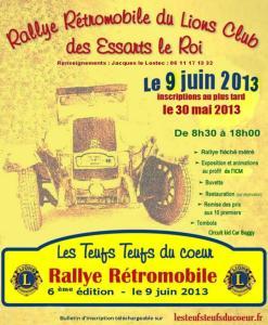 lelr_RallyeteufTeufs_2013-06