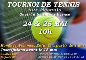 lesmesnuls_tournoi-tennis_2014-05