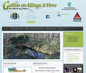 galluis-site