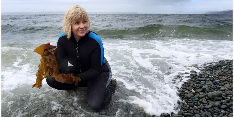 Indigena founder Lisa Walsh holds up seaweed on the beach by her company's head office and manufacturing facility in CBS, N.L.