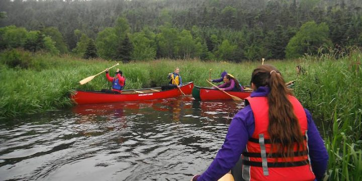 Canoeing during summer 2016