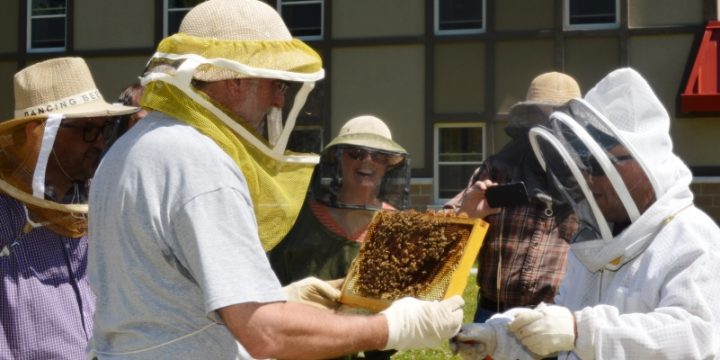 Randy Skinner, right, establishes some bee hives. Here he passes a column to Dr. Marc Thackeray.