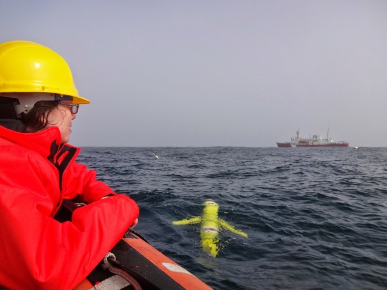 Tara Howatt looks on as a glider from Memorial University is deployed on the Newfoundland shelf with the CSS Hudson in the background. (Credit Autonomous Ocean Systems Laboratory of Memorial University)