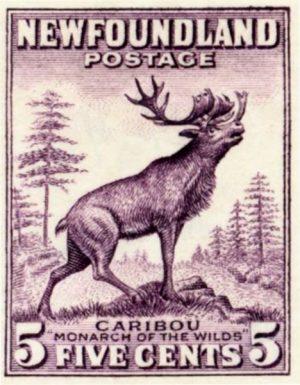 Newfoundland postage stamp