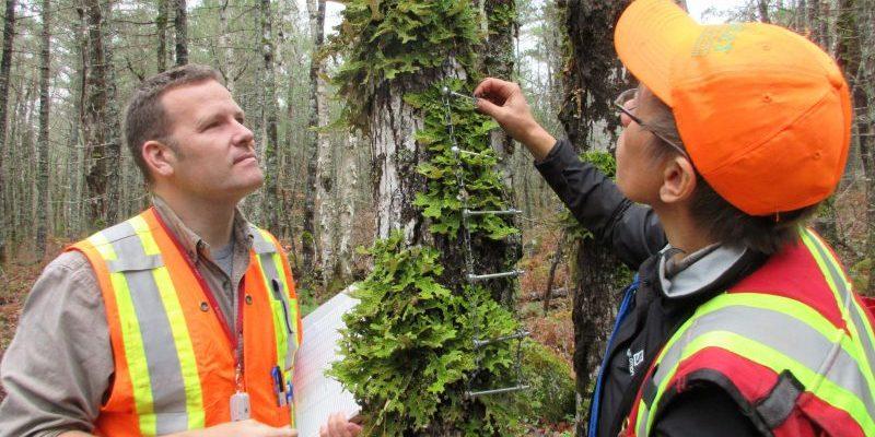 Dr. Troy McMullin and Dr. Yolanda Wiersma