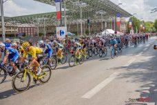 Tour de France 2018 (Reynald Valleron) (6)