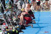 Triathlon (Reynald Valleron) (100)