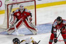 hockey-sur-glace-amical-les-gothiques-vs-strasbourg-0041-leandre-leber-gazettesports-1017x678